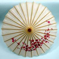 Custom Origami
